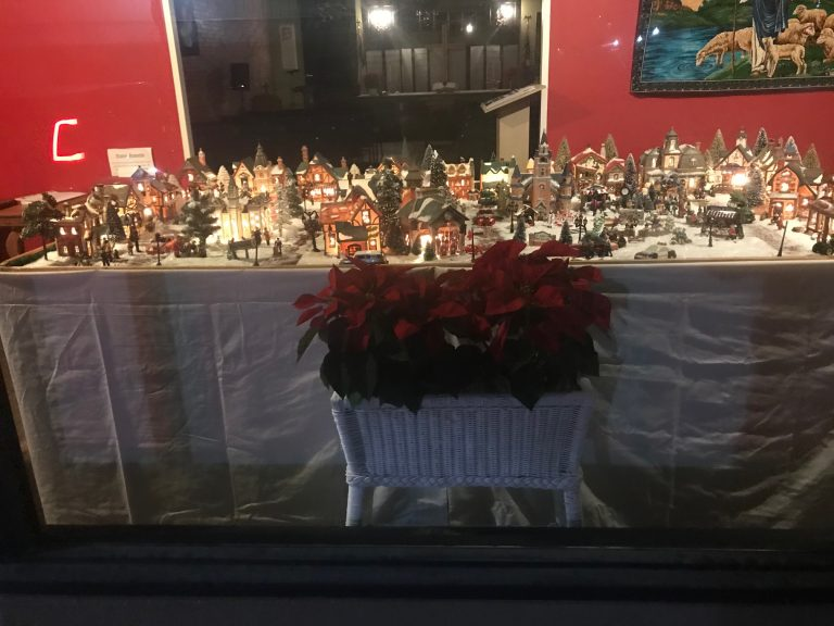 Our Christmas Village 2019
